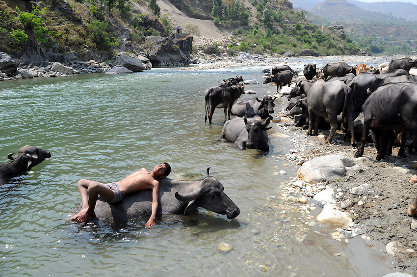 Sharafat dries off after a swim in the Yamuna River.