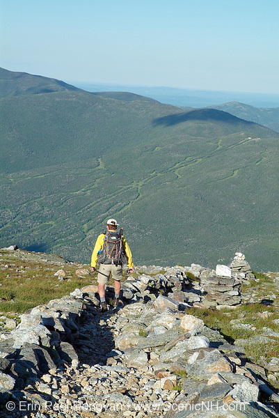 Hiker descending Boott Spur Trail in the White Mountain National Forest of New Hampshire. Afternoon sun reflects off the Wildcat Ski Mountain. A scree wall is in view. Scree walls are built on the edge of trails to discourage hikers from going off trail. Building these small walls helps protect the fragile alpine habitat and is positive impact.