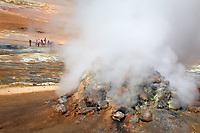 Fumarole emitting sulfuric gases, Namafjall Hverir Geothermal Area, North Iceland, Iceland