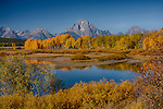 Wyoming, Northwestern, Jackson, Grand Teton National Park. Oxbow bend on the Snake River in autumn.