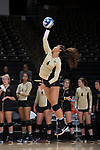 Jayda Howard (6) of the Wake Forest Demon Deacons serves against the USC Upstate Spartans in the LJVM Coliseum on September 9, 2017 in Winston-Salem, North Carolina.  The Demon Deacons defeated the Spartans 3-2.   (Brian Westerholt/Sports On Film)