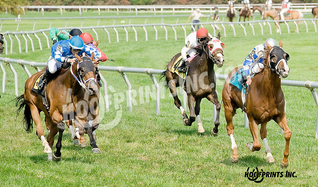 Arion Silver winning at Delaware Park on 8/20/14