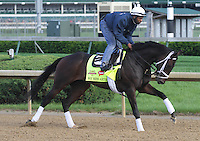May 1, 2014: We Miss Artie gallops in preparation for the Kentucky Derby at Churchill Downs in Louisville, KY. Zoe Metz/ESW/CSM