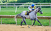 Keep It Pithy winning at Delaware Park on 8/4/16<br /> Oops - Kevin Mendez drops his whip, it's back there