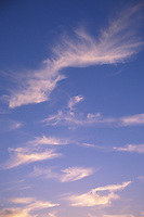 Cirrus Clouds in the Evening