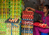 A women is sorting and weighing eggs at a store in Mandalay for whole sale, Myanmar.