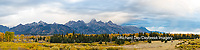 67545-08914 Fall color from Blacktail Ponds Overlook, Grand Teton National Park, WY