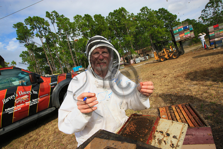 At Bob Harvey's apiary in West Palm Beach, Florida, the team of scientists from the Pennsylvania Department of Agriculture. Here, Jeff Pettis shows us a reading from a larva frame.