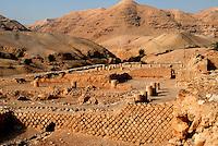 GERICO / ISRAELE.ROVINE DEL PALAZZO DI ERODE (15 A.C.).FOTO LIVIO SENIGALLIESI..JERICHO / ISRAEL.RUINS OF HEROD PALACE.PHOTO LIVIO SENIGALLIESI