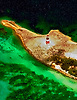 Aerial Photograph of Castle Island Lighthouse near Acklin Island, Bahamas Southeastern entrance to Crooked Island Passage.