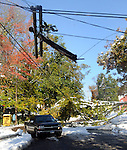 Vehicles had to go around a large tree limb , under a broken telephone pole and by some utility lines laying on the ground to get down Parker Street in Manchester, after the the record breaking snow storm brought down trees and utility wires leaving more than 700, 000 CL+P customers in the dark, Sunday, October 30, 2011. (Jim Michaud/Journal Inquirer)