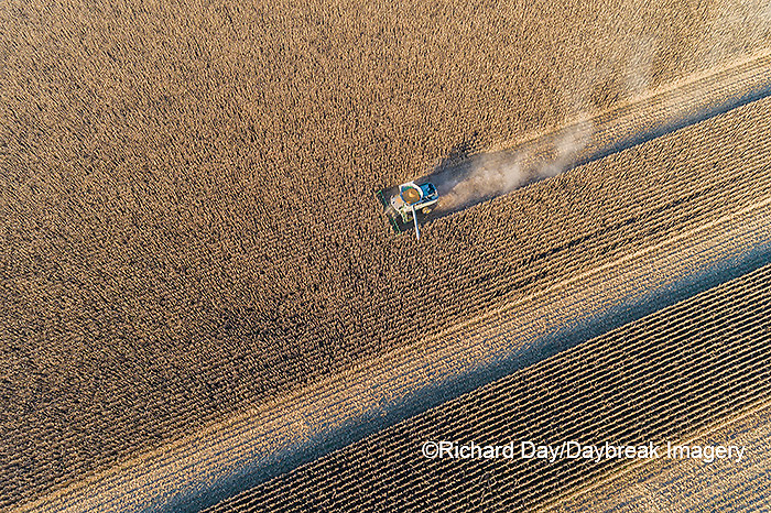 63801-13009 Harvesting corn in fall-aerial  Marion Co. IL