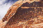 Elaborate ancient Native American petroglyphs of the Basketmaker Culture of about 2000 years ago chipped into the black desert varnish of a cliff face in the Bears Ears National Monument in Utah.