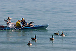 Women & dog kayaking Lake Tahoe.  Canada geese.