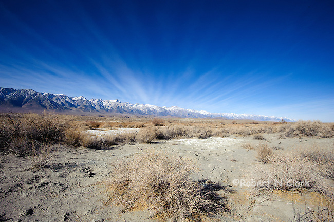 Lower Owens River Project January 2013