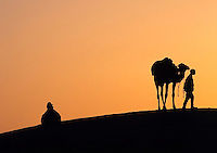 Tunisia, Djerba: young man with dromedary, silhouette at dusk