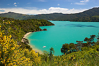 New Zealand, South Island, Marlborough Region, near Picton: Governor's Bay on Queen Charlotte Sound | Neuseeland, Suedinsel, Marlborough Region, bei Picton: Governor's Bay am Queen Charlotte Sound