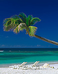 Antigua, West Indies   <br /> Palm tree extends over white sand beach and two beach chairs at Long Bay<br /> -Caribbean Islands