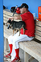 "July 3, 2009:  Manager Mark DeJohn of the Batavia Muckdogs after batting practice with ""Haley"" (Stadium Grounds Director dog) before a game at Dwyer Stadium in Batavia, NY.  The Muckdogs are the NY-Penn League Short-Season Class-A affiliate of the St. Louis Cardinals.  Photo By Mike Janes/Four Seam Images"