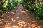 Images of Prince Edward Island, Canada.  Red dirt road.