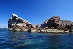 Los Islotes, Gulf of CA