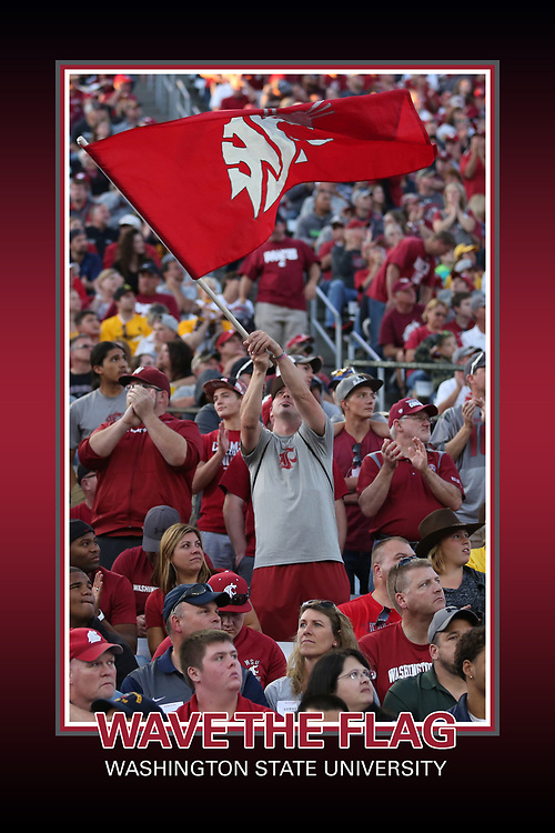 "Memorabilia print for ""Waving the Flag"" for Washington State Cougar Athletics, taken during the 2015 football season at Martin Stadium in Pullman, Washington, against the Wyoming Cowboys."