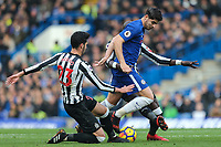 Alvaro Morata of Chelsea (centre) is tackled by Mikel Merino of Newcastle United (left) during the Premier League match between Chelsea and Newcastle United at Stamford Bridge, London, England on 2 December 2017. Photo by David Horn.