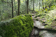 Appalachian Trail - Moss covered rock on  Kinsman Ridge Trail . Located in White Mountains, New Hampshire  USA.