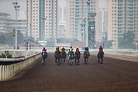 SHA TIN,HONG KONG-MAY 05: Barrier Trial,from the view from front, at Sha Tin Racecourse on May 5,2017 in Sha Tin,New Territories,Hong Kong (Photo by Kaz Ishida/Eclipse Sportswire/Getty Images)
