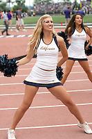 Cal Cheerleaders