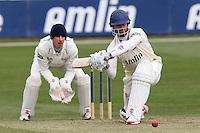 Cricket 2013-03