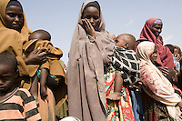 Kenya - Dadaab – 21st July 2011. Refugees who arrived last night or this morning are queueing at Dagahaley registration center in order to receive cooking tools and their first food ration.