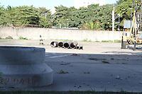 CAMPINAS, SP, 09.08.2019: AUTO ESCOLA-SP - Local onde funcionava uma auto-escola no Jd. Leonor em Campinas. (Foto: Luciano Claudino/Código19)