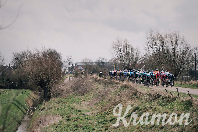 The flat dutch countryside<br /> <br /> 106th Scheldeprijs 2018 (1.HC)<br /> 1 Day Race: Terneuzen (NED) - Schoten (BEL)(200km)