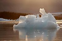 Summer landscape of icebergs at Bear Glacier Lagoon in Kenai Fjords National Park.  Kenai Penninsula, Summer, Alaska   <br /> <br /> Photo by Jeff Schultz/  (C) 2019  ALL RIGHTS RESERVED