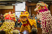 The lion dancers of Vovinam Viet-Do-Dao of San Jose perform at the Lunar New Year celebration at San Leandro's main Library, San Leandro, California.