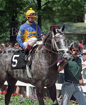 Winning Colors photographed at Saratoga Race Course during the 1989 meeting