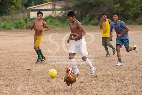 Aldeia Baú, Amazon,  Para State, Brazil. Young Kayapo men play football in a field in the forest with a cockrel.