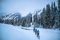 A group of ski tourers moving through snow covered trees in the Aksuu Valley, Kyrgyzstan