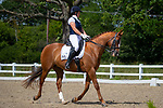 Elementary 53 (2007) Warm up. Arena 2. Pet Plan Area Dressage Fesival 2019. British Dressage. BD. Brook Farm Equestrian Centre. Stapleford Abbotts. Essex. GBR. 30/06/2019. ~ MANDATORY Credit Nick Gunn/Sportinpictures - NO UNAUTHORISED USE - 07837 394578
