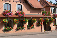 house with flowers dahlenheim alsace france