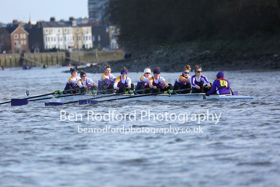Crew: 73   University of London B   W Champ<br /> <br /> Quintin Head 2019<br /> <br /> To purchase this photo, or to see pricing information for Prints and Downloads, click the blue 'Add to Cart' button at the top-right of the page.