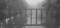 Foggy Morning, Quantong Bridge<br /> Natimuk Road