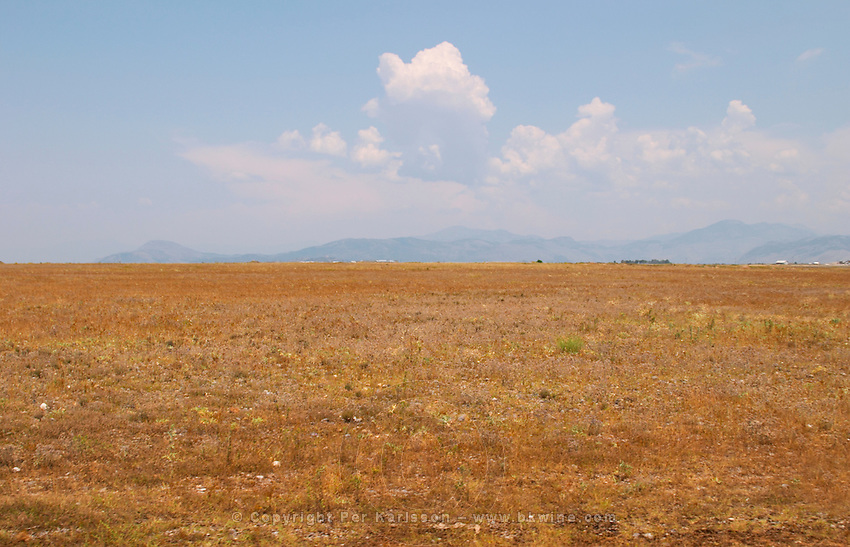 View of the dry plain around Shkodra with Ranxe mountains in the background. Kantina Miqesia or Medaur winery, Koplik. Albania, Balkan, Europe.