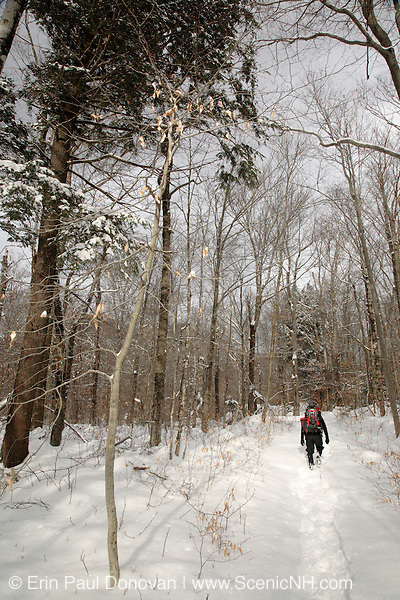 Hiking on the Dry River Trail in the White Mountains, New Hampshire USA during the winter months.