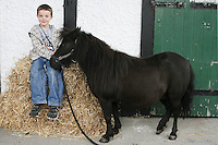 3/8/2010. Conan Kelly aged 9 from Sligo is pictured at the RDS  getting his horse Dixie ready for the start of the Fáilte Ireland Dublin Horse show. Picture James Horan/Collins Photos
