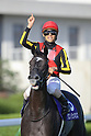 Horse Racing : Shuka Sho 2019