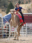 Teri Vance races in a media exhibition round at the 56th annual International Camel &amp; Ostrich Races in Virginia City, Nev. on Friday, Sept. 11, 2015. <br /> Photo by Cathleen Allison