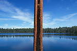 North Twin lake, with Ponderosa Pine tree trunk (scarred by forest fire); .Deschutes National Forest, Cascade Mountains, Oregon.