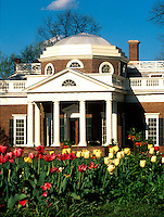 Monticello-Home of Thomas Jefferson..Monticello thomas jefferson flowers spring Display image Only: Monticello-the historical home of Thomas Jefferson located in Charlottesville, Va. Photo/Andrew Shurtleff